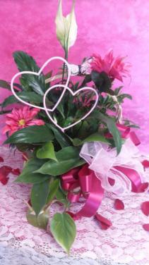 2 Hearts Peace Lily