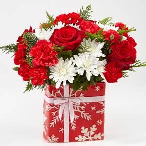 20-C2d Gift of Joy Christmas