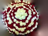 20 Dozen Magnificent Roses