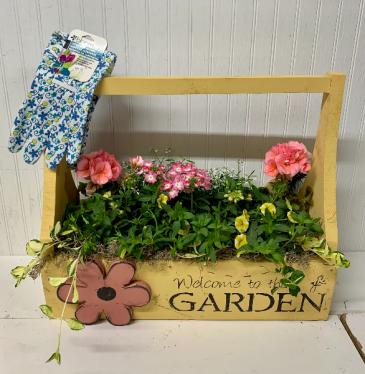 20 inch Annual Wooden Planter Box