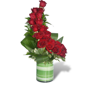 """20 Reasons Why""  in Maryland Heights, MO 