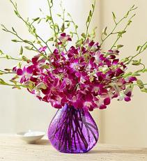 20 Stem Orchid - Purple Vase Arrangement