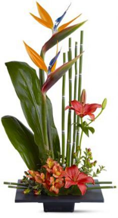 Paradise Found Tropical Arrangement