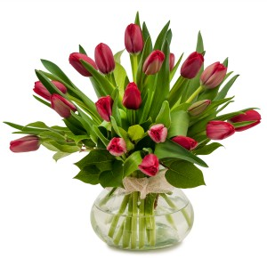 TIMELESS TULIPS *AVAILABLE IN ASSORTED COLORS ONLY**