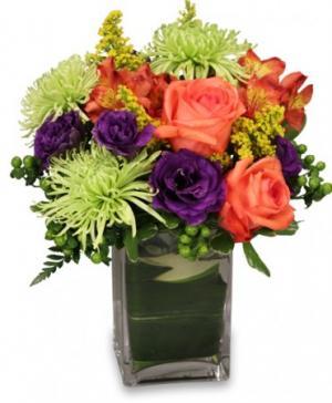 SPRING IT ON! Fresh Flowers in Omaha, NE | BLOOMS