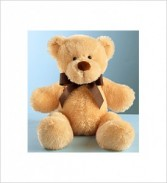 "22"" Light Brown Bear Gift"