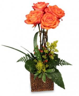 TOPIARY OF ORANGE ROSES Arrangement in Monument, CO | ENCHANTED FLORIST