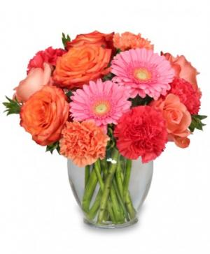 PETAL PERFECTION Flower Arrangement in Enfield, NH | SAFFLOWERS