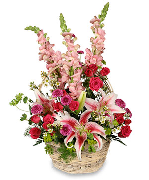 BECAUSE YOU'RE SPECIAL Flower Basket in Ellisville, MO | West County Florist