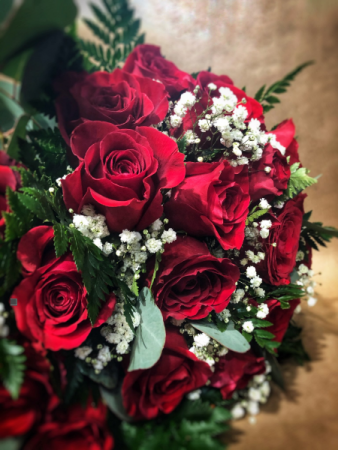 24 Amazing Roses Roses