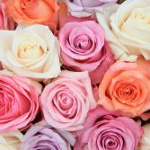 24 assorted roses wrapped bouquet
