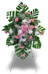24 Carnation Easel