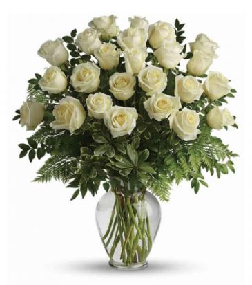 24 Elegant White Roses