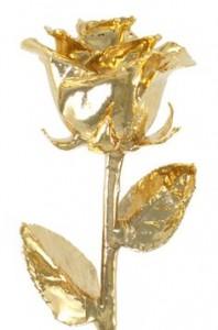 24 K Dipped Real Roses Keepsake Gift