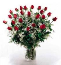 24 Radiant Long Stem Rose Bouquet Rose Bouquet