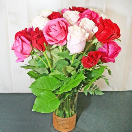 24 LONG STEM ROSES-ASSORTED Roses