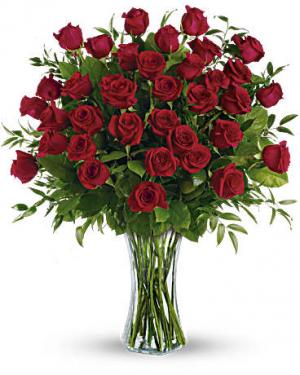 24 Lovely Roses  Red Rose Arrangemnt in Conyers, GA | FLOWER GALLERY