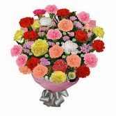 24 Mixed Colour Carnations Wrapped Cut Bouquet