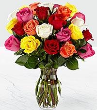 24 Multi-Color Roses Arrangement