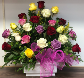 24 multicoloured roses  Sympathy arrangement
