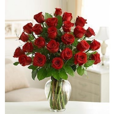 24 Premium Long Stem Red Roses Floral Arrangement