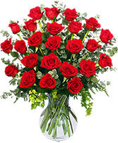 24 Radiant Roses Red Roses Arrangement in Charlotte, North Carolina | FLOWERS PLUS
