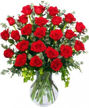 24 Radiant Roses Red Roses Arrangement in Clio, MI | WILLOW COTTAGE FLOWERS AND GIFTS