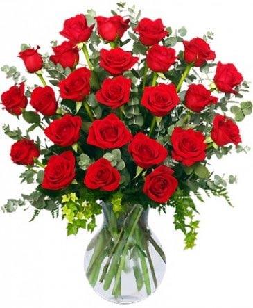 24 Radiantes Rosas Rojas Arreglo de Rosas Rojas