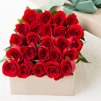 24 Red roses boxed