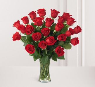 SALE: Impression Rose 2 dozen long stem 2 DOZEN ROSES