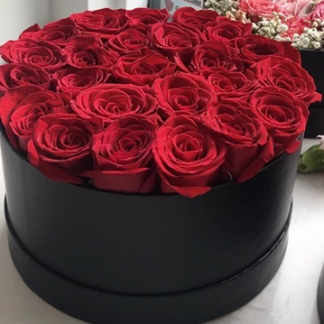 24 Romantic Wishes - Red Rose Box