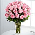 24 Soft Pink Roses In Vase