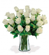 24 WHITE ROSES DELIVERY