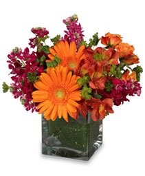 FLORAL EXUBERANCE Arrangement