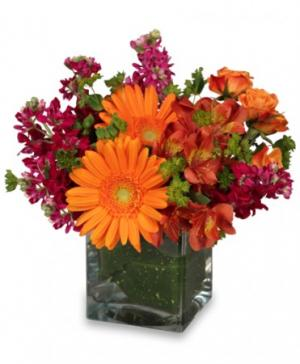FLORAL EXUBERANCE Arrangement in Spruce Grove, AB | TARAH'S GROWER DIRECT