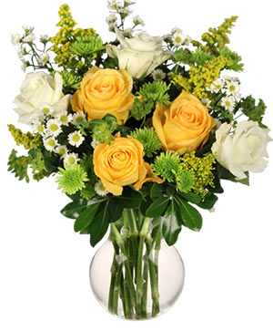 White & Yellow Roses Arrangement in Newport, ME | Blooming Barn Florist Gifts & Home Decor