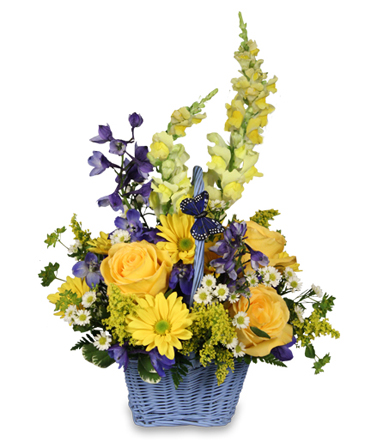 Fresh Air Basket Arrangement in Burlington, NC | STAINBACK FLORIST & GIFTS