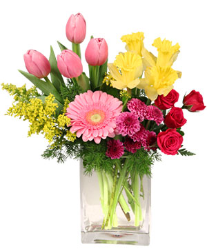 Spring Is In The Air Arrangement in Crewe, VA | GREENHOUSE FLORIST & COLLECTIBLES