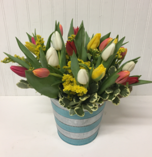25 Tulips in Striped Tin  in Easton, MD | ROBINS NEST FLORAL AND GARDEN CENTER