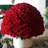 250 rose box