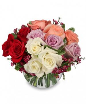 Rendezvous Roses Arrangement in Bryan, TX | NAN'S BLOSSOM SHOP