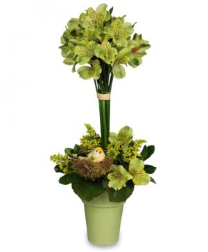Going Green  Topiary Arrangement in Decatur, IL | WETHINGTON'S FRESH FLOWERS & GIFTS, INC.