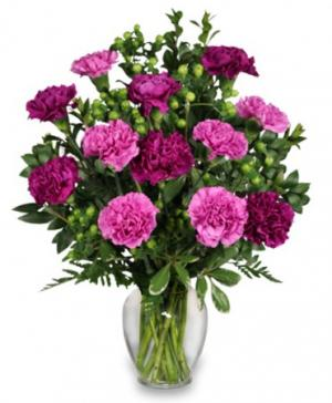 PUMP UP THE PURPLE Carnation Bouquet in Anderson, SC | NATURE'S CORNER FLORIST