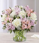 Loving Sentiments Pink & White