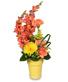 Effervescent Blooms Bouquet