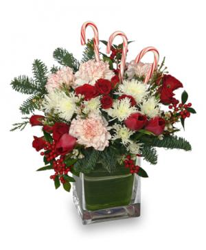 PEPPERMINT PLEASURES Christmas Bouquet in Mustang, OK | MUSTANG FLOWERS & GIFTS