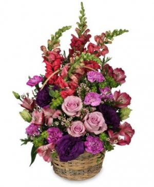 Home Sweet Home Flower Basket in Cypress, TX | BLOOMS FROM THE HEART