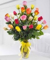 2dz.Rainbow of Color Roses in Vase