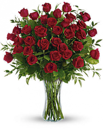 3 Dozen Long Stemmed Roses