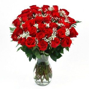 3 Dozen Long Stem Beautiful Red Roses Flower Delivery Fort Worth